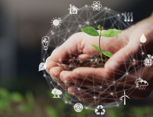 """THE """"GREEN SWEEP"""": TOWARDS A NEW, MORE SUSTAINABLE HORIZON FOR SOUTH AFRICAN BUSINESSES"""